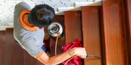 Why Call Pest Inspection? - Pest Inspection